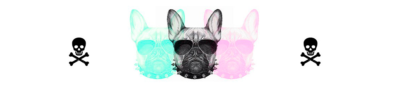 Head-Perros-Hipster.jpg